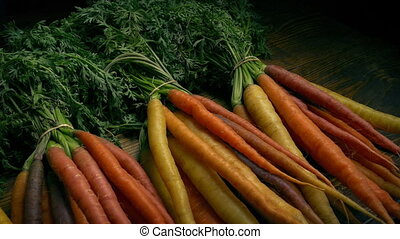 Passing Bunches Of Carrots - Tracking shot moving slowly...