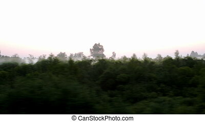 View from a moving train of countryside in a fog in summer