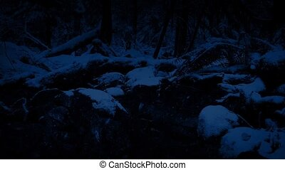 Passing Forest River In Snowfall At Night