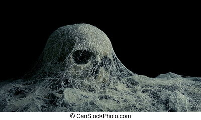 Passing Old Skull Under Cobwebs In Tomb Or Cave - Passing a...