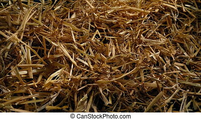 Passing Straw Pile Closeup - Tracking shot moving slowly...