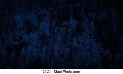 Passing Wooded Mountainside In The Dark