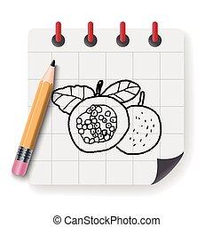Passion Fruit doodle