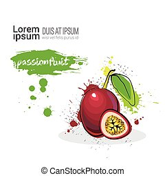 Passion Fruit Hand Drawn Watercolor On White Background With Copy Space