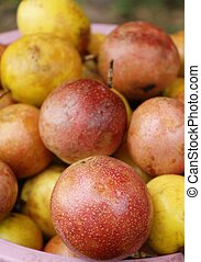 Passion fruit is delicious at street food