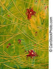 pasta, paper:, fiori rossi