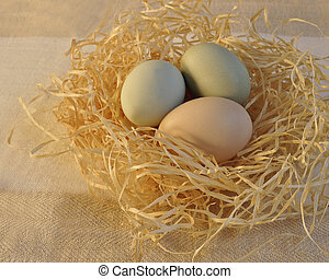 Pastel Colored Easter Eggs in a Nest