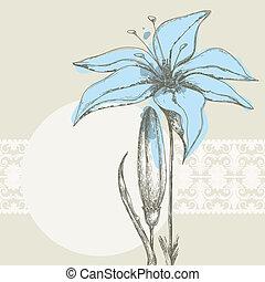 pastel, floral, achtergrond, witte , kant, frame, voor,...