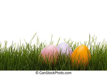 pastel, jaja, trzy, tło, biały, trawa, wielkanoc