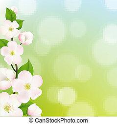 pastel, macieira, flores, quadro