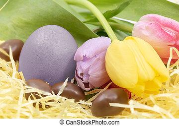pastel, peint, tulipes, oeufs, lavande, chocolat, couleur,...
