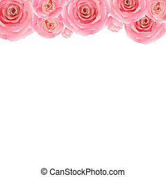 Pastel Pink Rose Border, With Gradient Mesh, Vector ...