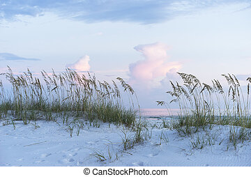 Pastel Sunset at Florida Beach Scene with Sea Oats and Soft...
