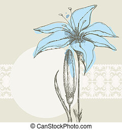 pastell, spets, text, ram, bakgrund, blommig, vit