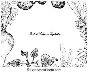 pasto, clip, isolato, erba, erbaceo, inchiostro, botanico, rapa, crudo, svedese, frondoso, trasparente, schizzo, napobrassica, rapifera, subsp, maturo, svedese, neep, fondo, crescita, disegnato, bianco, pianta, radice, tubero, insalata, nutrizione, poco, foglia, disegno, organico, illustrazione, cibo, brassica, cucina, linea, mano, tuberoso, incisione, fresco, rutabaga, crescere, sano, buongustaio, mangiare, naturale, vettore, verdura, napus, ingrediente, pittura, testa, arte, botanica