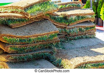 pasto o césped, alfombra, rollos, pelado, de, tierra, en, residencial, development., apartamentos, de, césped, rollos
