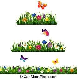 pasto o césped, frontera, con, flor, colección