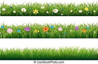 pasto o césped, frontera, con, flor