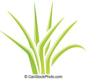 pasto o césped, verde, brillante, icono