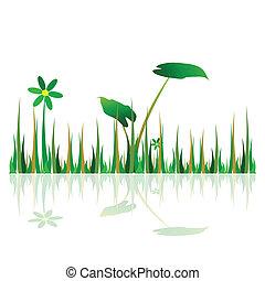 pasto o césped, verde, ilustración, con, flor