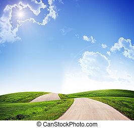 pasto o césped, verde, paisaje