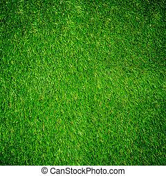pasto o césped, verde, textura