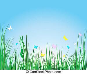 pasto o césped, y, flores