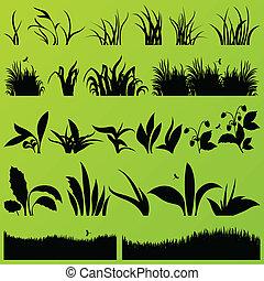 pasto o césped, y, plantas, detallado, siluetas, ilustración, colección, plano de fondo, vector
