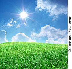 pasto o césped, y, profundo, cielo azul