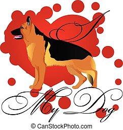pastor alemão, amor, cão, meu