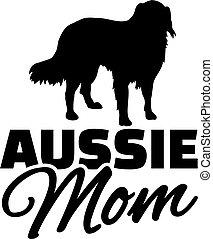 pastor, australiano, mãe