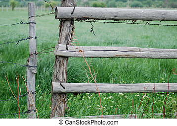 Pasture fence and wire gate.