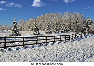 Pasture in the Winter Snow