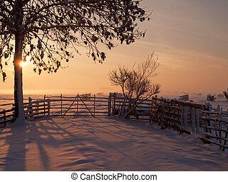 Pasture in winter sunset