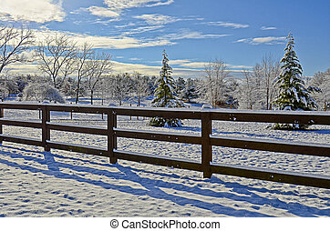Pasture Land in the Snow