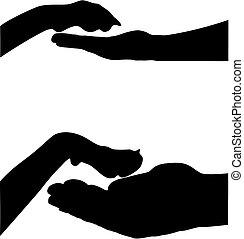 pata, mão