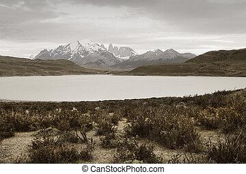 Patagonian landscape. Torres del Paine peaks. Chile....