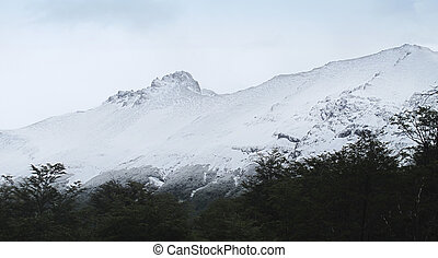 Patagonian landscape with snow mountains.