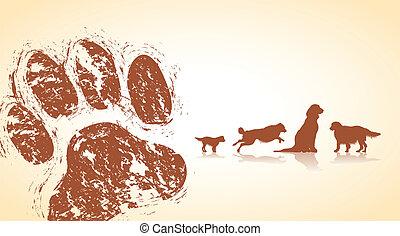 patas, cão