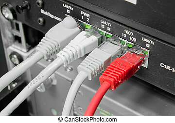 patch cables - ethernet cables connected to switch