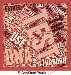 Paternity Test Are You The One text background wordcloud concept