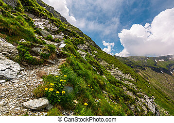 path along the steep slope. beautiful summer landscape with...