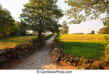 Path along the way of St. James in Spain
