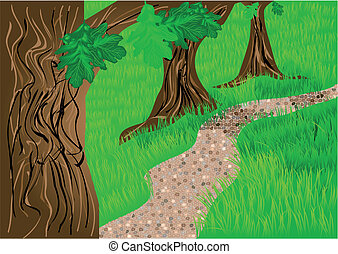 path and trees. oak on the green grass