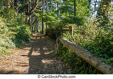 Path At Park 2 - A view of a path at Saltwater State Park in...