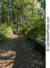 Path At Park - A view of a path at Saltwater State Park in ...