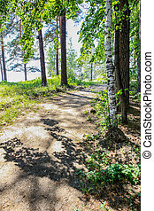 Path by the lake