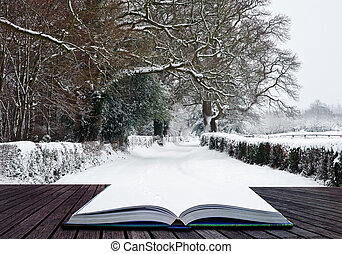 Path coming out of book into Winter wonderland landscape