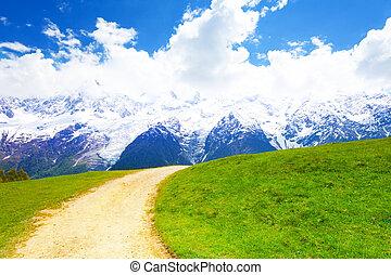 Path crossing meadow near Mont Blanc in summer