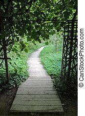 A path for walking pedestrians in a modern green city park